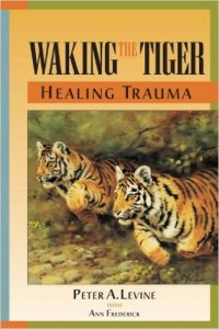 Waking the Tiger book cover